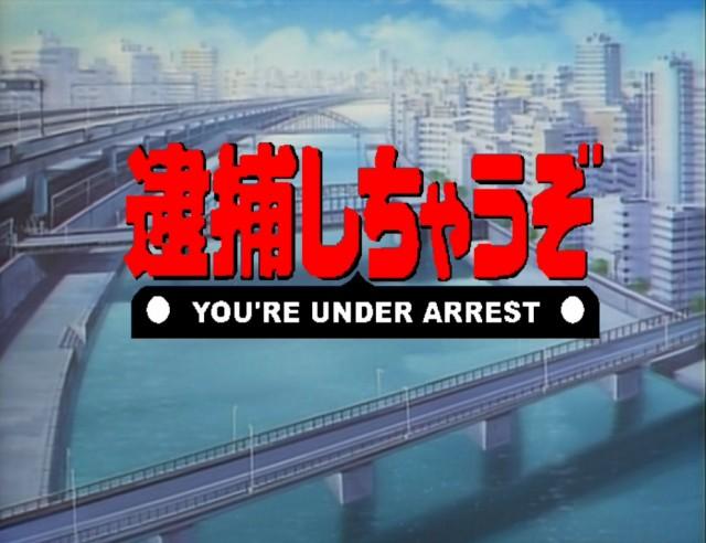 You're Under Arrest - logo