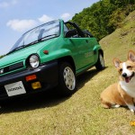 dog-vintage-city-cabriolet-wp1