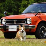 dog-vintage-civic-rs-wp2