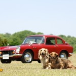 dog-vintage-s600-coupe-wp1