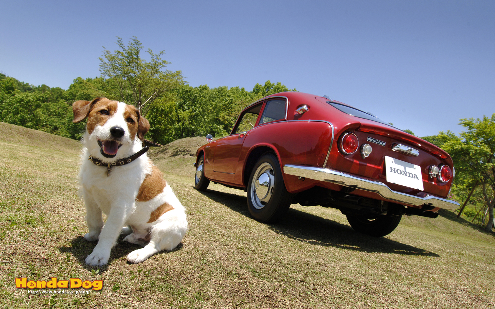 dog-vintage-s600-coupe-wp2