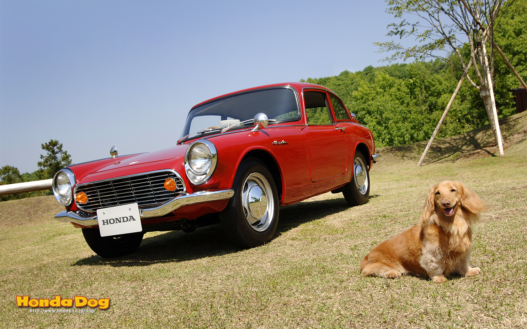 dog-vintage-s600-coupe-wp3