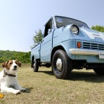 dog-vintage-t360-wp4