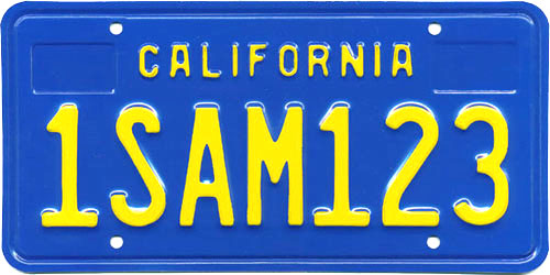 A vehicle owner may surrender his license plate at the DMV.