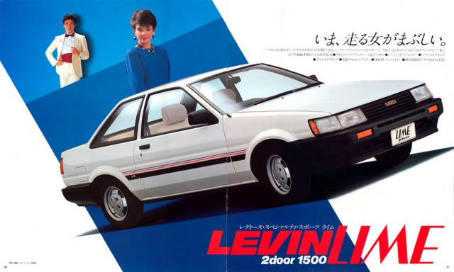 jp1983Levin_brochure11
