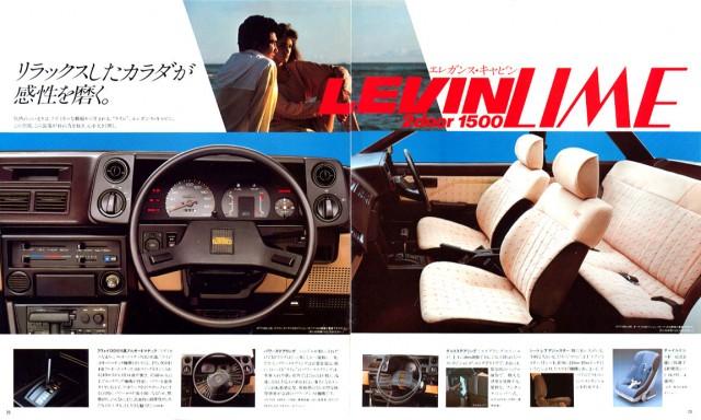 jp1983Levin_brochure12