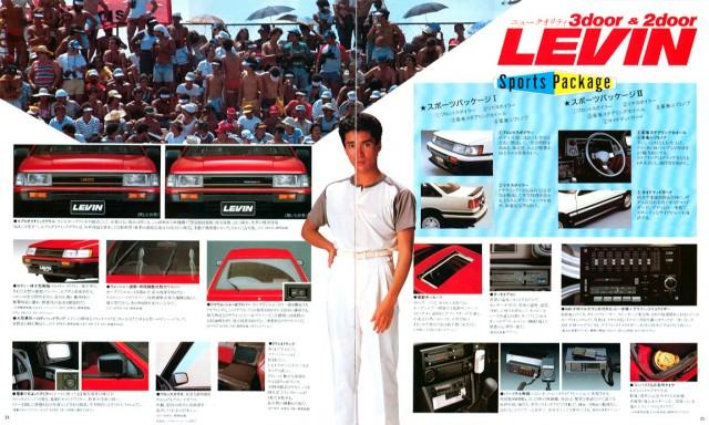 jp1983Levin_brochure13